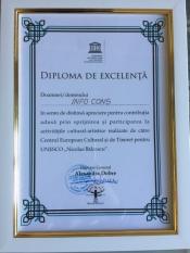 Diplomă de excelență primită de către Centrul European Cultural si de Tineret pentru UNESCO