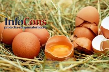 Ouăle şi produse din ouă destinate consumului uman