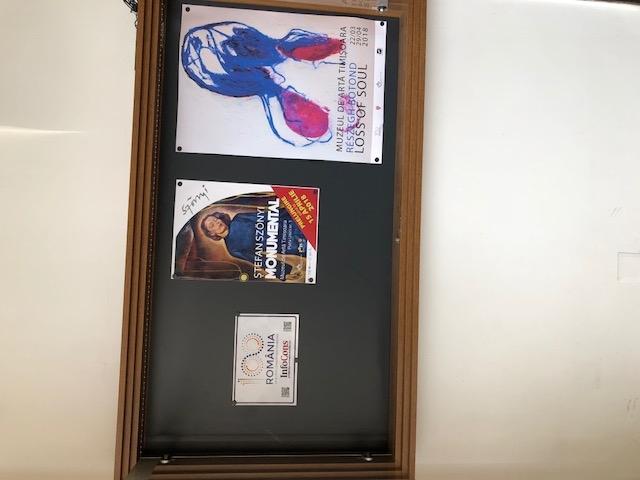Muzeul de Arta Timisoara, Judetul Timis InfoCons - Protectia Consumatorului