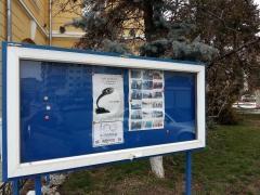 Primaria Municipilui Botosani, Judetul Botosani InfoCons - Protectia Consumatorului