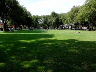 Suprafața spațiilor verzi: Aradul, lider cu peste 1000 de hectare