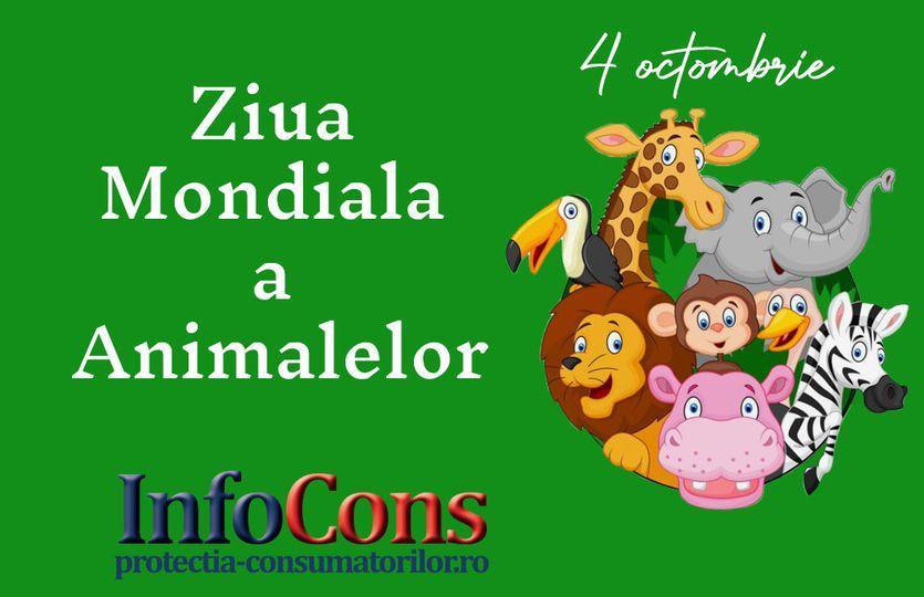 Ziua mondiala a Aminalelor. InfoCons